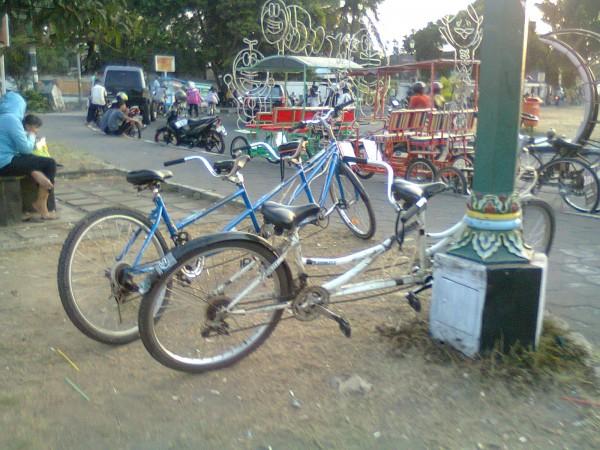 Alun Alun kidul Yogyakarta