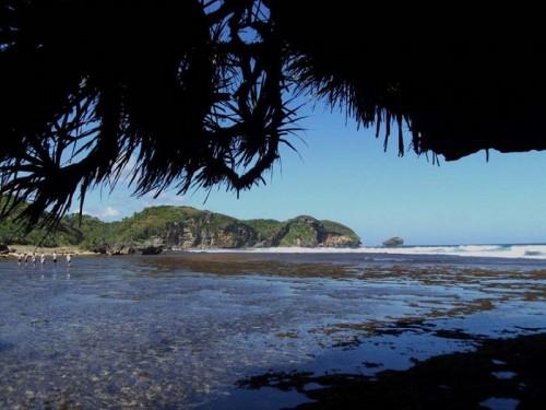 Drini Beach tours and travels yogyakarta