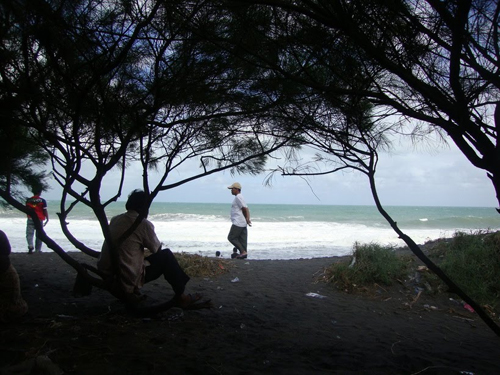 Pantai Kuwaru rental mobil yogyakarta
