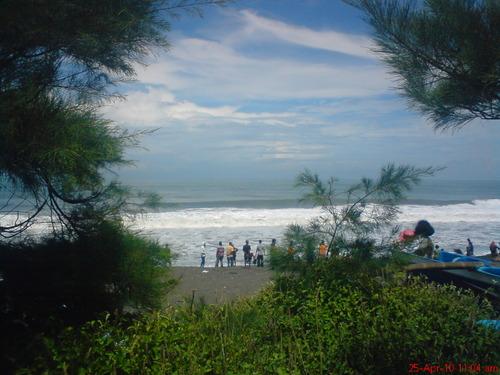Wisata Pantai Kuwaru Yogyakarta