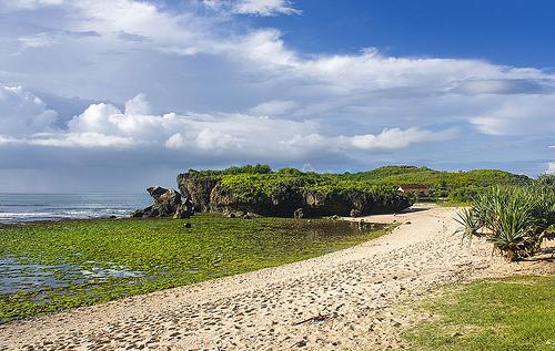 krakal beach sewa mobil murah bagus di jogja