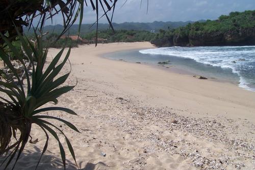 pantai drini wisata yogyakarta