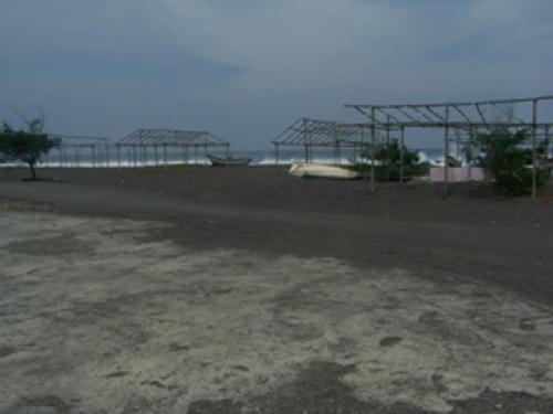 Pantai Congot rental mobil jogja