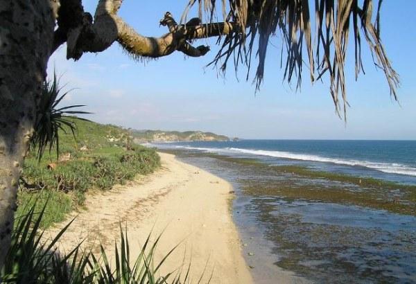 pantai di daerah gunung kidul Yogyakarta, pantai di gunung kidul, pantai di gunung kidul yogya, pantai di gunung kidul Yogyakarta, pantai di gunungkidul, pantai di gunungkidul diy, wisata pantai wonosari gunung kidul
