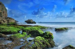 Pantai Jogan | Wisata Pantai Gunungkidul