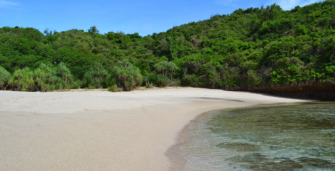 Pantai Greweng Jogja