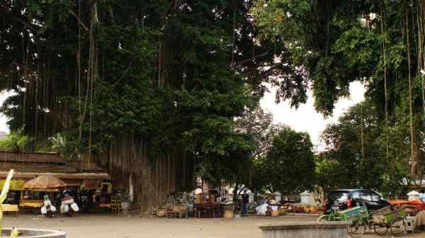 Pakualaman Yogyakarta